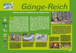 Station11_Gaenge-Reich
