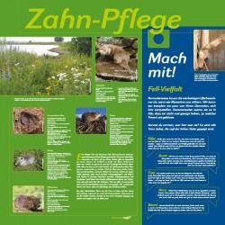 Station3_Zahn-Pflege_Seite_2