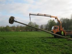 Nisthilfe für Störche auf den Wiesen bei Altendorf aufgestellt