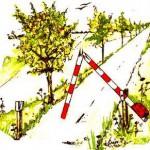 25. Jubiläum der Grenzöffnung Böckwitz Zicherie