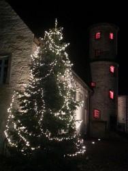 Weihnachtsbaum-Anleuchten in Brome