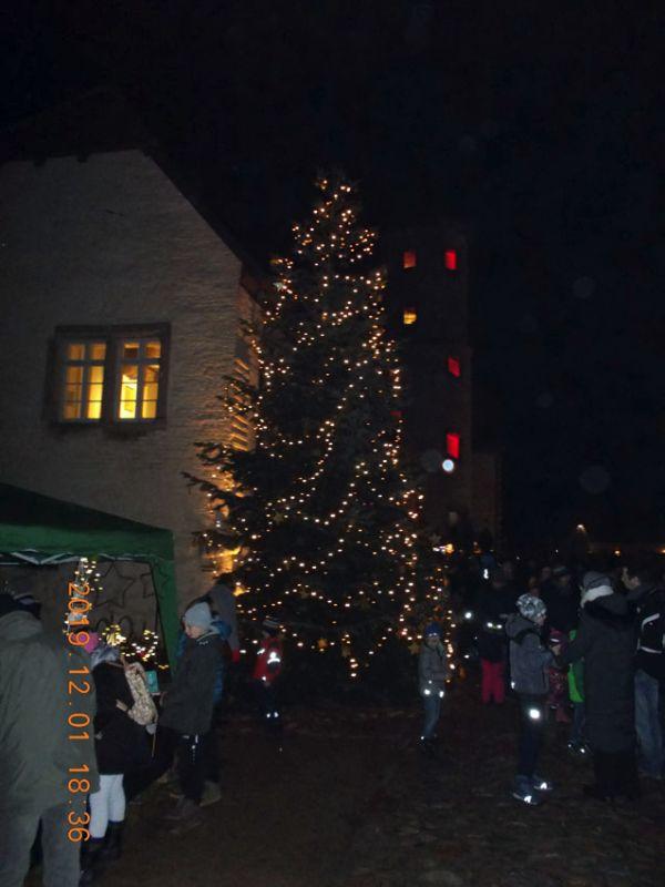 Weihnachtsbaum Anleuchten in Brome